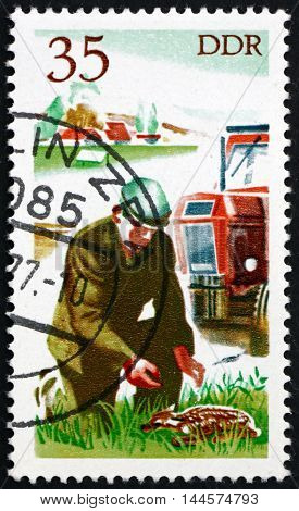 GERMANY - CIRCA 1977: a stamp printed in Germany shows Tractor Driver Saving Fawn Hunting in East Germany circa 1977