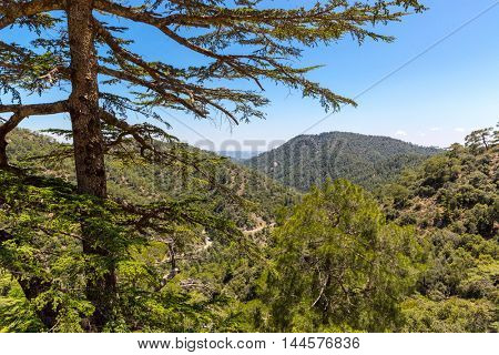 nice day in mountains, Cyprus landscape