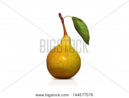 juicy and ripe green pear with leaf on the stalk - tracing photo vector eps isolated