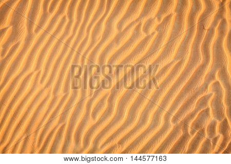 Ripples in the sand in the dunes of Dubai Desert Conservation Reseve, UAE
