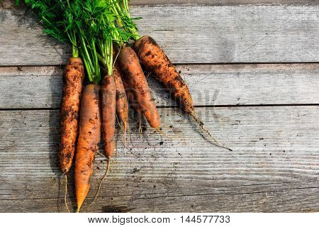 bunch of fresh harvested carrots with green leaves over wooden background. food. vegetable