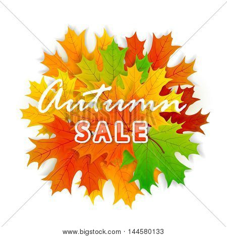 Inscription Autumn sale and orange maple leaves on white background, illustration.