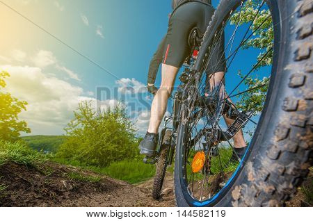 Downhill Mountain Bike Ride. Men on a Bike. Sports and Recreation Theme.