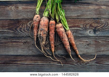 raw carrots on the ground
