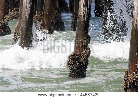 Crashing waves under the pier in California