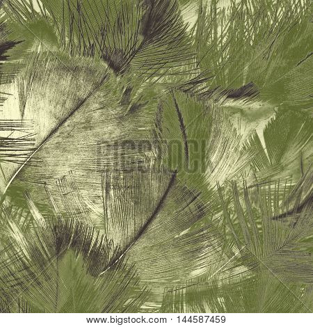 Abstract creative background from feather with filtered color