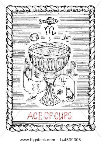 Ace of cups. The minor arcana tarot card, vintage hand drawn engraved illustration with mystic symbols. Bowl or chalice full of water, banner, leaves and zodiac signs