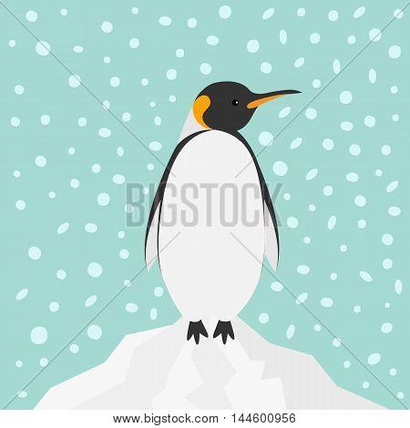 King Penguin Emperor Aptenodytes Patagonicus on iceberg Snow in the sky Flat design Winter antarctica background Vector illustration