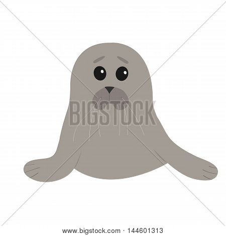 Cute seal pup baby harp. Cartoon character. White background. Isolated. Flat design. Vector illustration