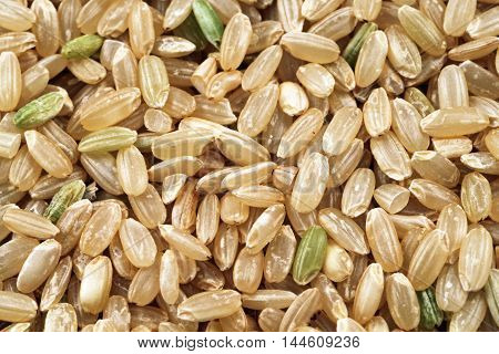 An extreme macro image of whole grain brown rice