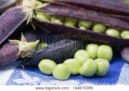 open marrow fat peas on blue background