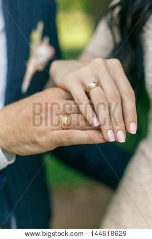 hands of bride and groom with wedding gold rings