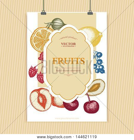 Fruits and berries vintage poster design ink sketch cherries peaches pears currants gooseberries fruits and berries background vector