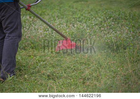 worker cutting grass lawn mower in green field.