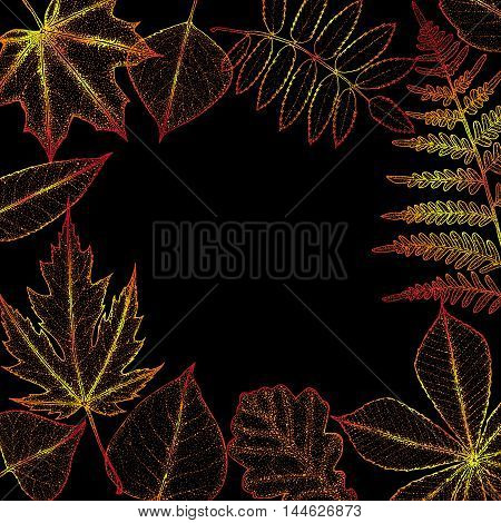autumn leaves background with space for text. Botanical illustration