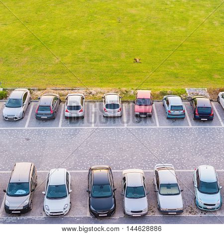 Top View Of Dual Parking Multi-storey Building And Dog Lying On Green Lawn