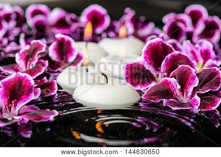 Beautiful Spa Composition Of Blooming Dark Purple Geranium Flower With Dew And Candles In Ripple Ref