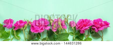 Flat Lay Of Beautiful Romantic Pink Rose Flowers With Buds And Leaves On Green Background, Greeting