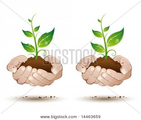 Hands with leaves