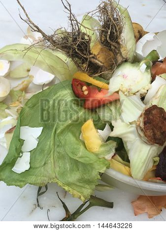 Fresh bio waste in a small plastic cup for composting