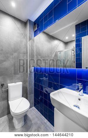 Modern Bathroom In Grey And Blue
