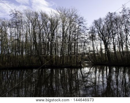 winter at a lake in the german muensterland