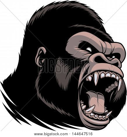 Vector illustration of head of wild ferocious gorilla screaming showing fangs