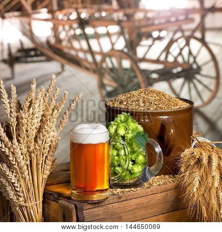 still life with glass of beer and raw material for beer production in interior