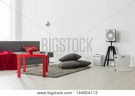 Big City's Young Single's Living Space