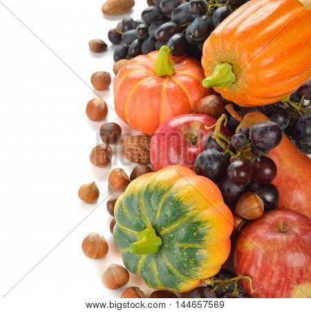 Autumn harvest on a white background close up