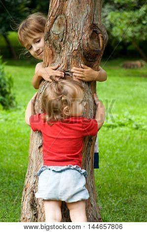 Two sisters hug a tree. Entertainment in the nature