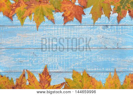Autumn leaves on a vintage background close up