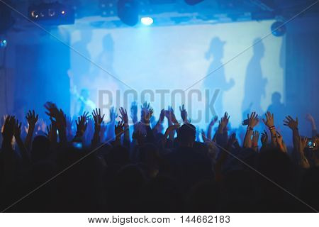 Rear view of audience going crazy at concert, hands up in the air in dark blue-lit music hall