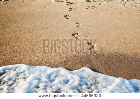 Human Footprints lead to the sea on the sand. Summer wallpaper