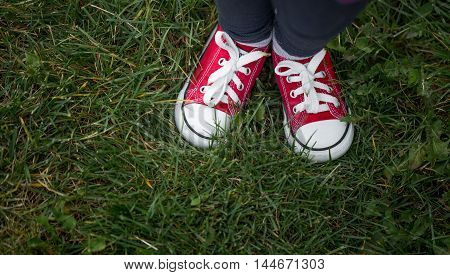 Red Sneakers On Green Grass, Top View