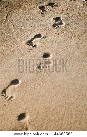 Women's footprints in the sand on the seashore