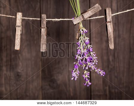 Lavender herbs drying on the wooden background