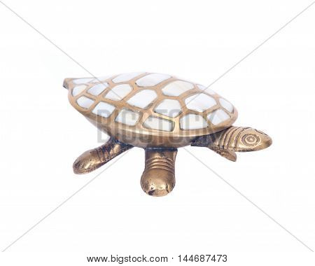 Decorative turtle jewelry box separated on white backgroundseparated on white background