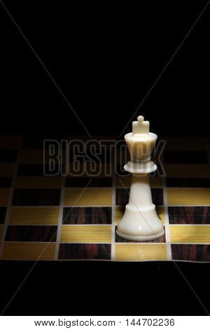 chess piece on the chess board