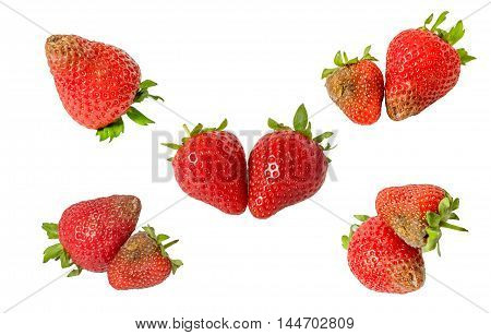 Rotten strawberries isolated on white background closeup,