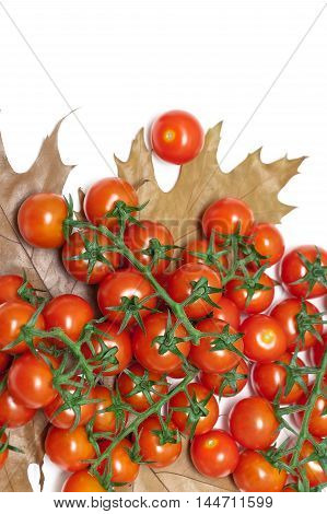 cherry tomatoes and autumn leaves on a white background. horizontal photo.