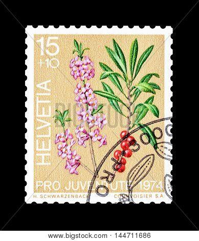 SWITZERLAND - CIRCA 1974 : Cancelled postage stamp printed by Switzerland, that shows Dwarf laurel.