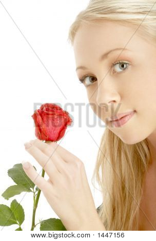 Romantic Blond With Red Rose