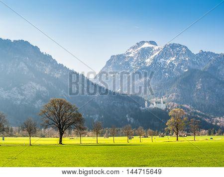 Fine Spring Landscape