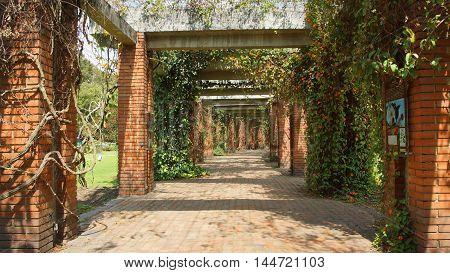 Bogota, Cundinamarca / Colombia - January 16 2016: Walk in the Botanic Garden of Bogota