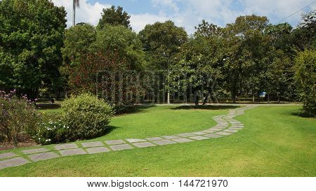 Stone path across the garden with trees in the background