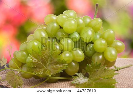 bunch of green grapes on sackcloth with a blurred background.