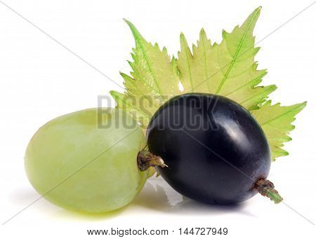 green and blue grapes with leaf isolated on white background.