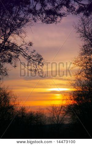 autumn landscape with droop sun