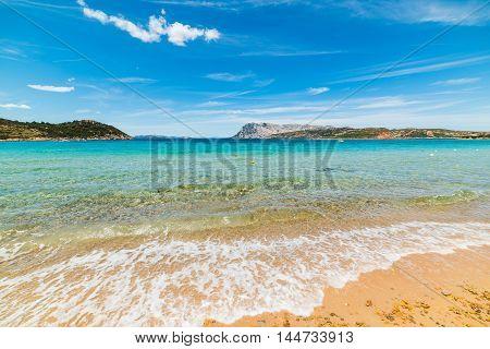 golden shore in Capo Coda Cavallo Sardinia